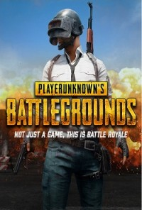Playerunknown's Battlegrounds Механики